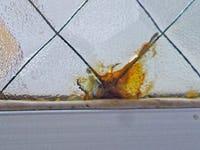 網入りガラス サビ